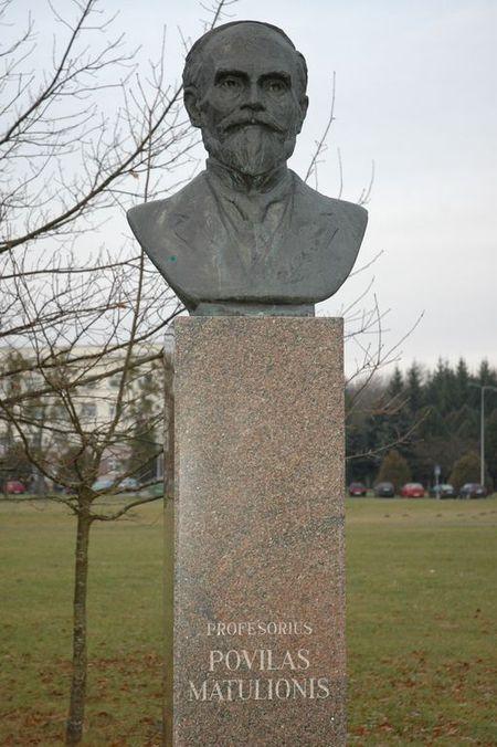 Prof. Povilo MATULIONIO biustas (atidengtas 1994 m. spalio 14 d., skulptorius Marijus Petrauskas)