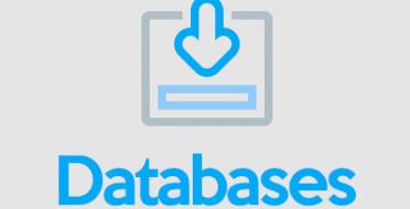 Testuojamos duomenų bazės