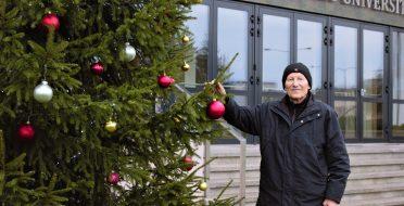 Miškininkas atskleidė, kaip išsirinkti tinkamiausią Kalėdų eglę
