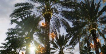 Lietuvaičių Kalėdos Sicilijoje. Puoštos palmės, kalėdiniai žaidimai kortomis, o vietoj kūčiukų – lęšių sriuba